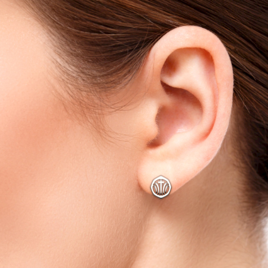 SHOUBU earrings